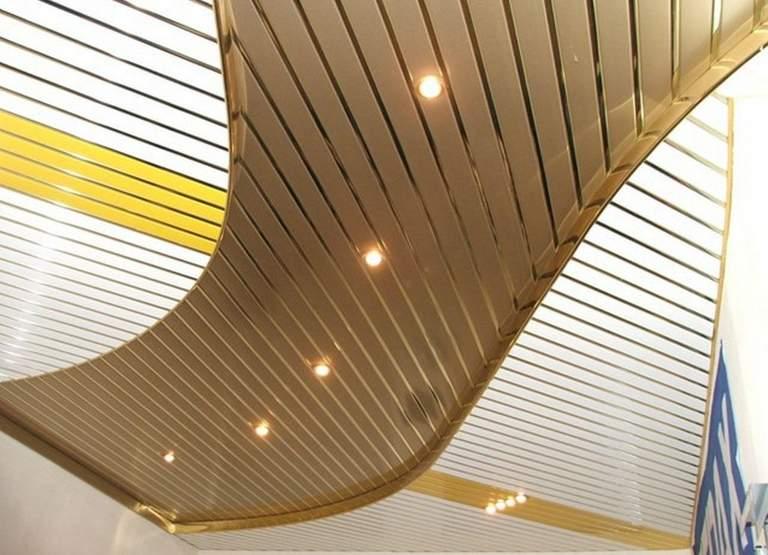 собака реечные алюминиевые потолки на кухне фото декоративной штукатурки